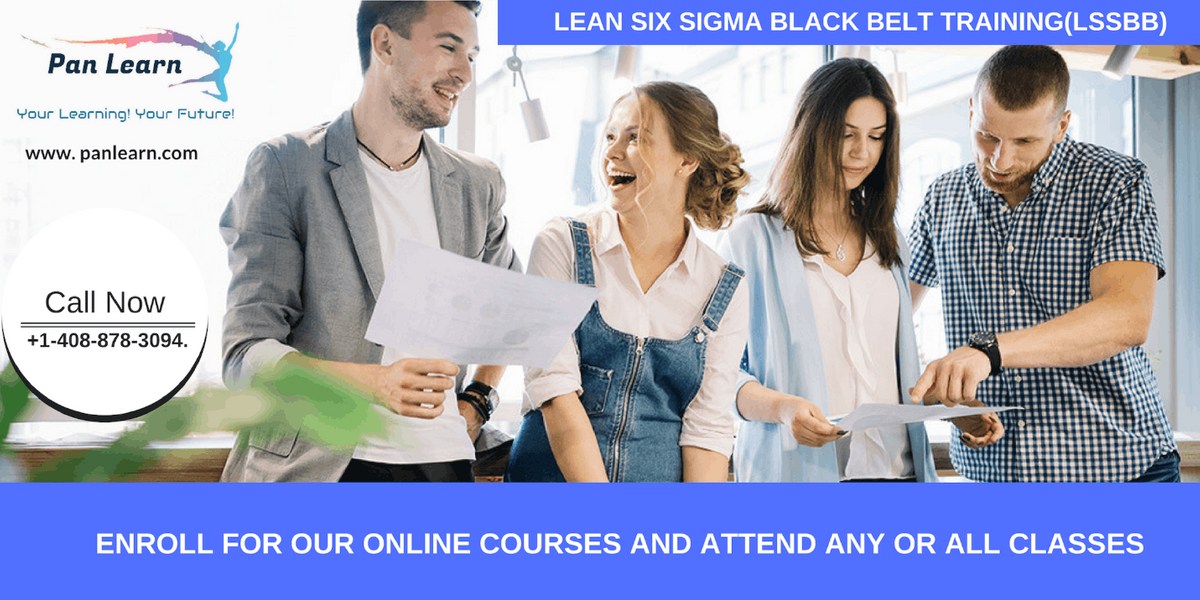 Lean Six Sigma Black Belt Certification Training In Chicago IL