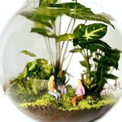 The Breathing Art - Terrariums - By Deepti Pitre