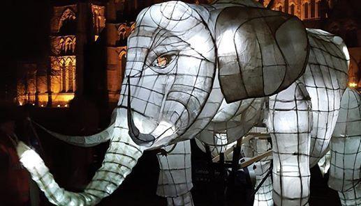 Salisbury Lantern Parade