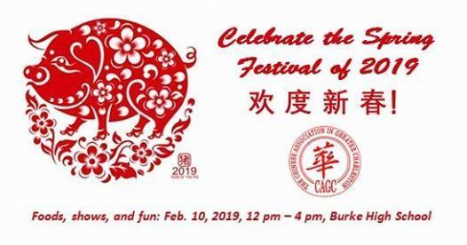 2019 Spring Festival Gala - Celebrating the Year of the Pig