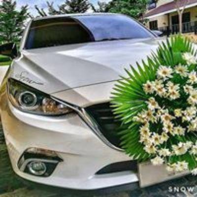 Snow Bridal Car