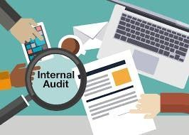 Role of Internal Audit in Procurement Training Seminar - Austin Texas - Yellow Book CPA & CIA CPE